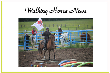 Tennessee Walking Horse News